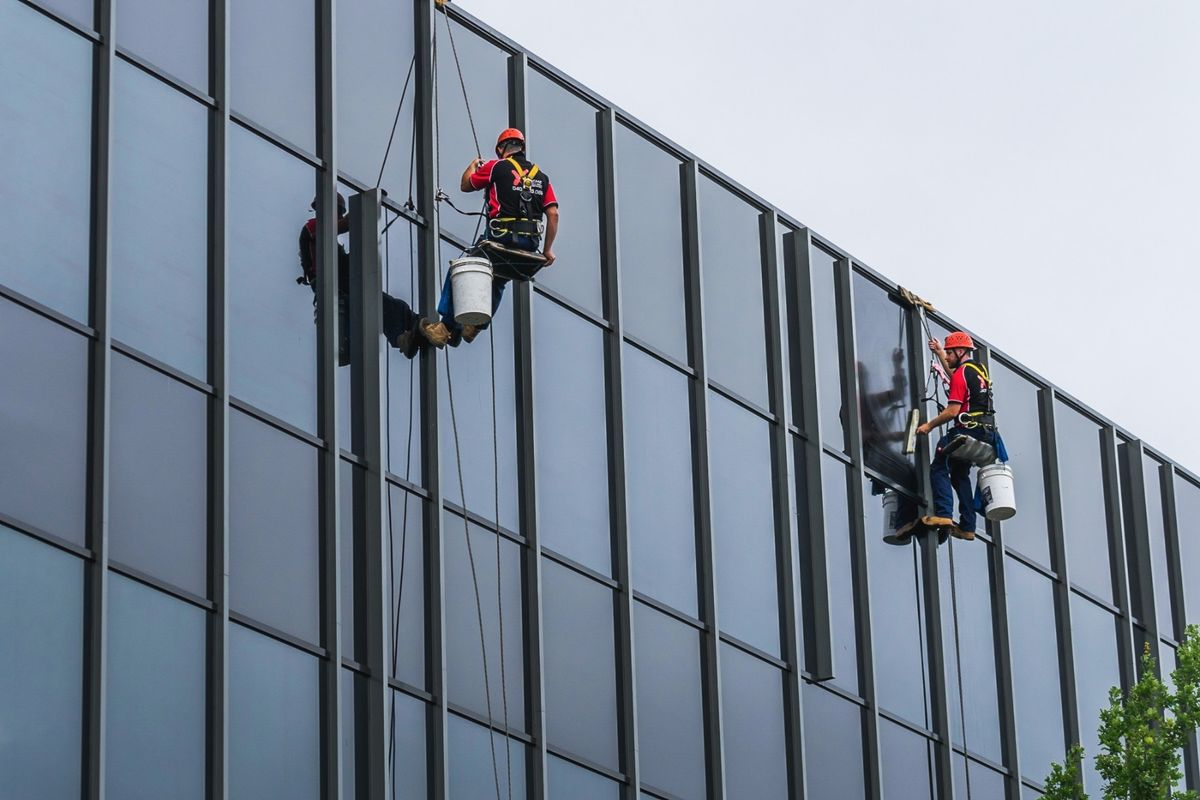 Portfolio pulizia vetrate palestra su fune italfuni for Costo della palestra giungla